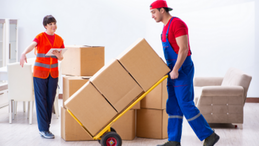 How do professional Removalists help